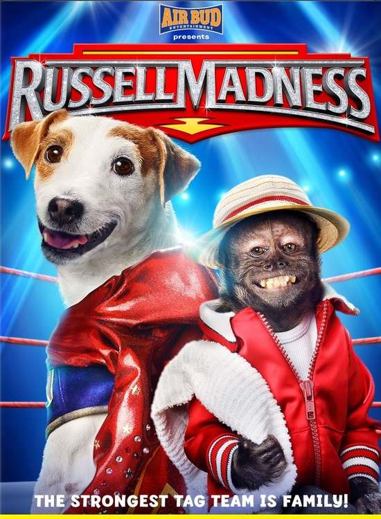 Russell Madness (2015) Tamil Dubbed Family Hollywood Movie Online Free Watch